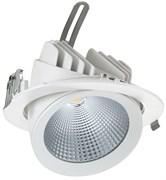 Delius DL-C 30Вт 4000К 30гр D=187мм h=154мм d=172мм 3200Лм (аналог JS014)  белый светильник(встраиваемый поворотный круглый)