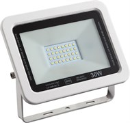 FL-STR FIRE ECO 30W 230V 4200K 110гр SMD IP65 3000Лм PF≥0.9 Черный -  уличный светодиодный светильник