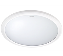 318166 LED CEILING, IP20, 2700K, 20 Вт, белый 380x380x60 (круглый, накладной) - св-к PHILIPS