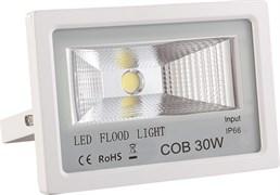 FL-STR FIRE PRO 30W 230V 4200K 40*70гр IP65 3200Лм PF≥0.9 белый -  уличный светодиодный светильник