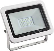 STR-FIRE ECO 30W  4200K IP65 110гр 230V SMD 3000Лм PF≥0.9 Черный -  уличный светодиодный светильник