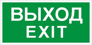 ПЭУ 011 «Выход/Exit» (240х125) PC-M /комплект, 2шт./